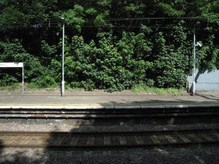 clapton train stations slbradley