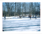 Ice Hockey on the Pond