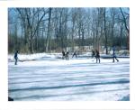 Ice Hockey on the Pond