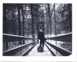 Bridge at Black Creek by slbradley